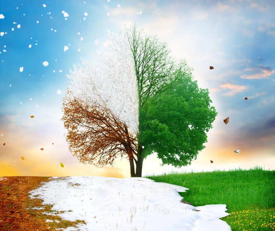 Sezonowa-zmienność-ciśnienia.png